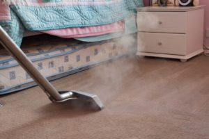 carpet cleaning in the room