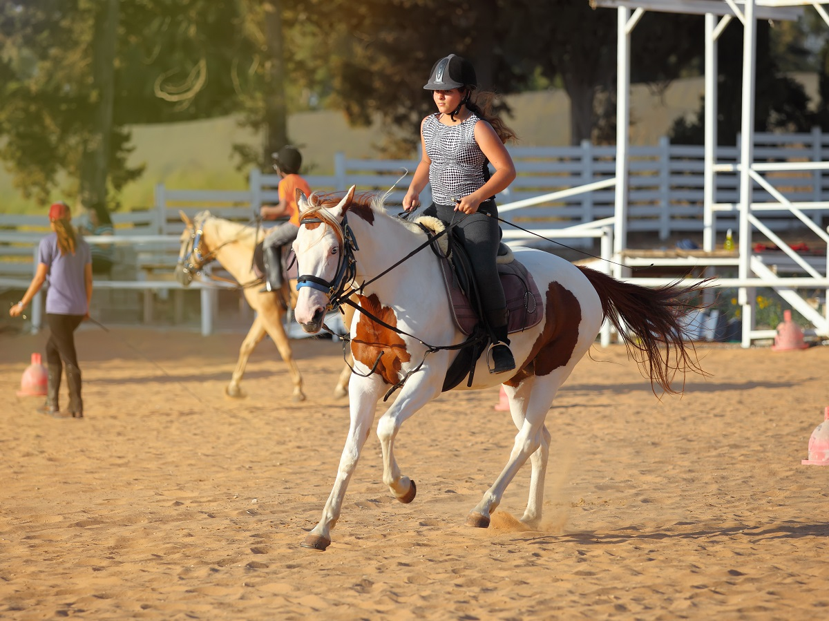 training for horse racing